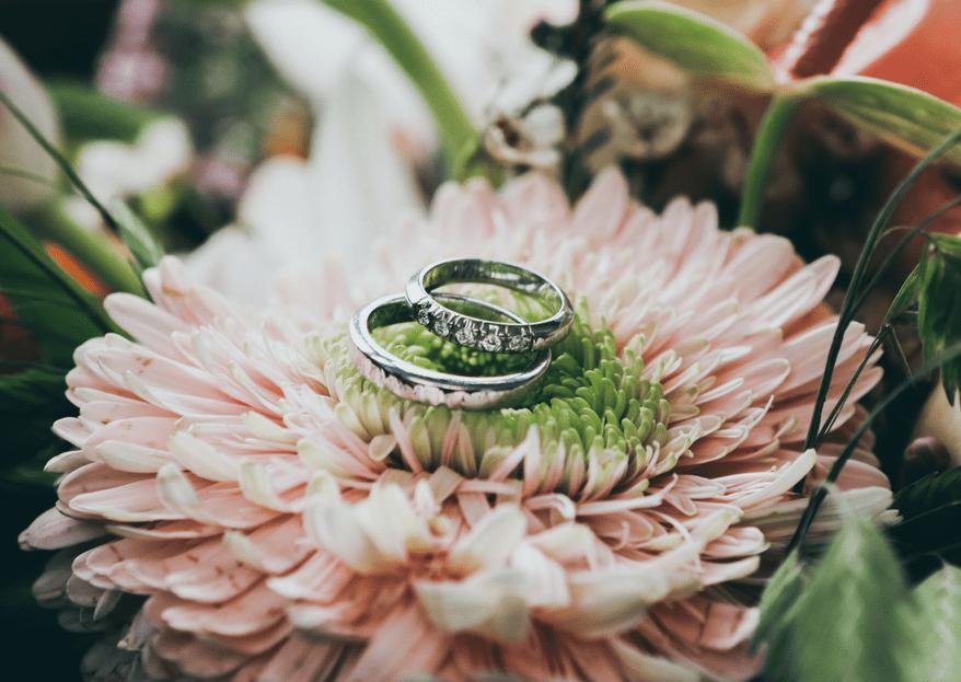 Cómo elegir las argollas de matrimonio en 5 sencillos pasos