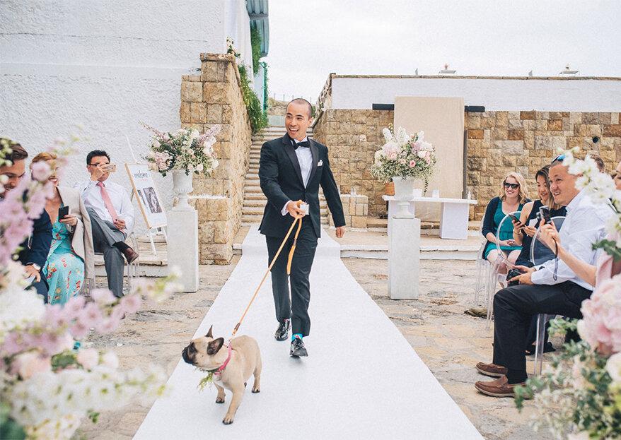 Os cinco momentos-chave dignos de fotografar o noivo