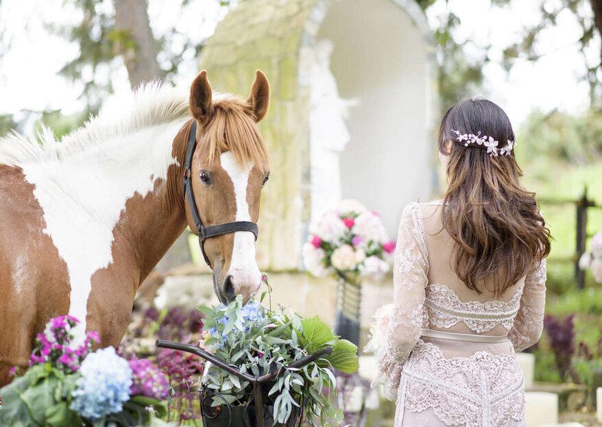 Un lugar espectacular y mágico para celebrar tu boda: te enamorarás de Casa de Paz