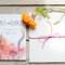 Convites desenhados à mão por Diana Nobre