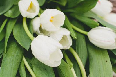 Decoración de boda con tulipanes: La sofisticación hecha flor