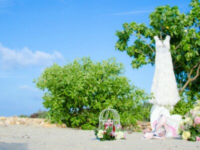 Get Married in La Guajira, Colombia! This top wedding planner explains why
