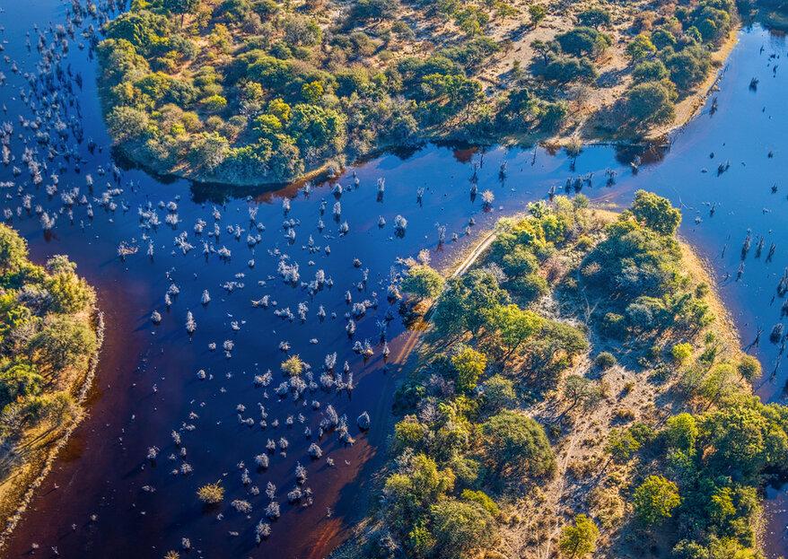 Luna de miel en Botswana: un tesoro escondido en lo más profundo de África