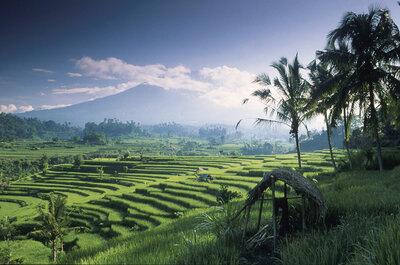 Bali: una luna de miel mágica en la