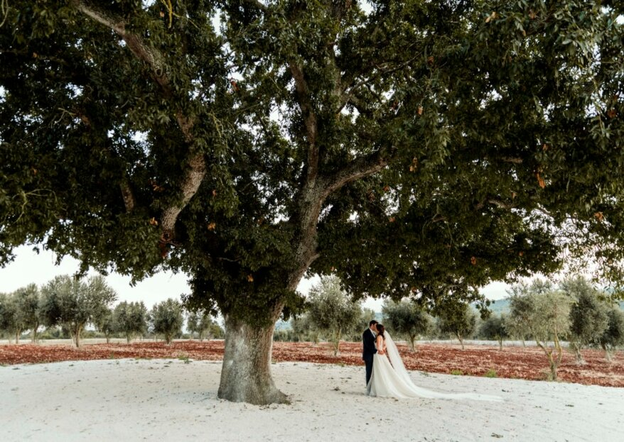 Masseria Grieco: Your Wedding In Perfect Apulian Style
