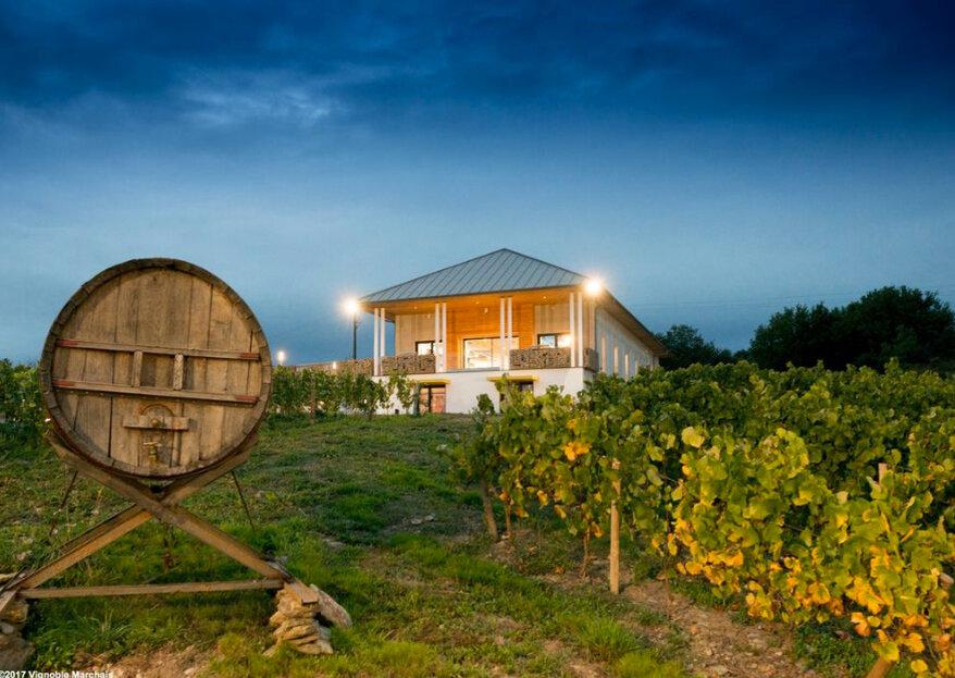 Réception Vignoble Marchais : un lieu d'exception au beau milieu des vignes
