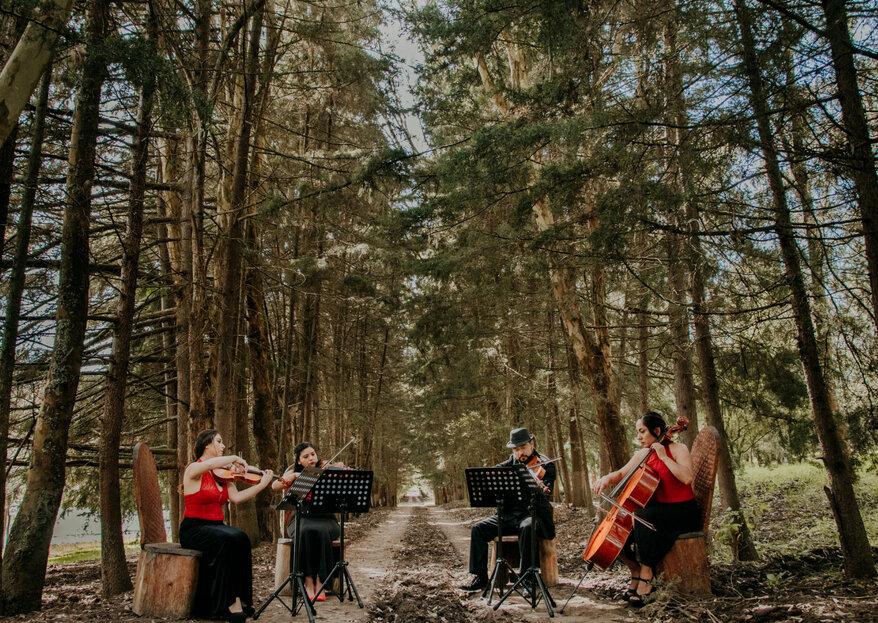El elemento que unirá a todos tus invitados en tu boda: ¡la música!