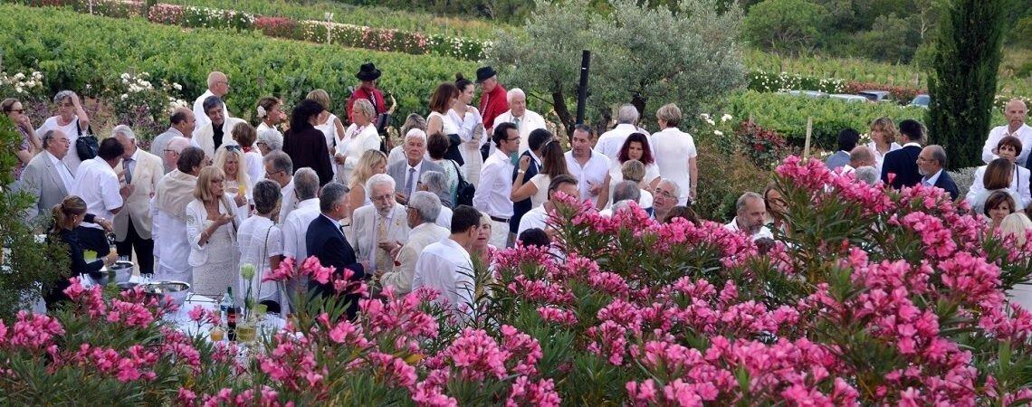 Mariage champêtre : un lieu de réception paisible au cœur des vignes dans le Var