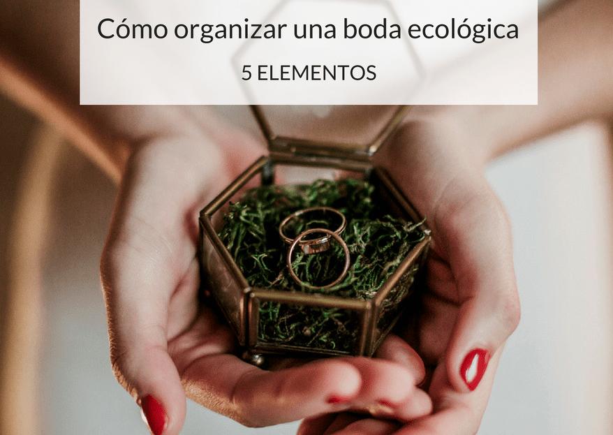 Cómo organizar una boda ecológica en 5 pasos: ¡la belleza de lo natural!