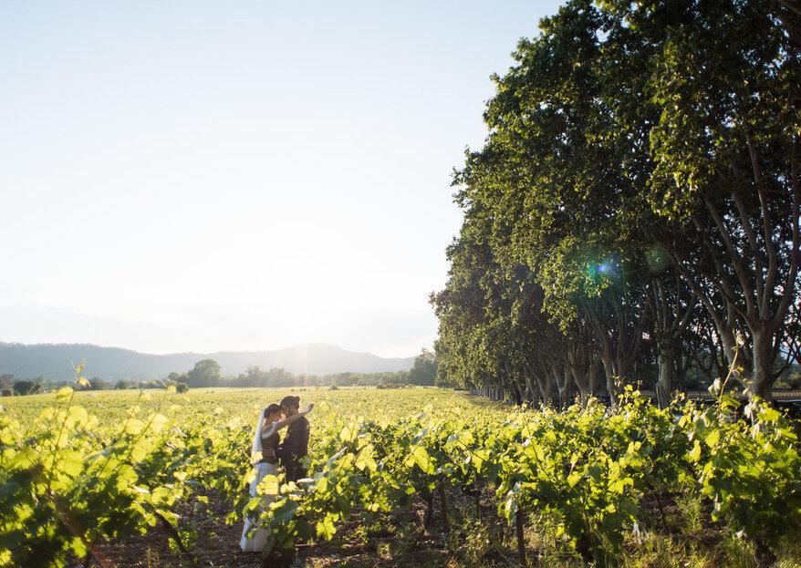 La Magnanerie de Saint Isidore : un domaine au cœur des vignes pour un mariage chic et bucolique