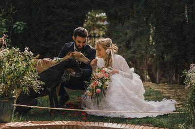 12 Tradições de casamentos pelo mundo que te deixarão de cabelo em pé!