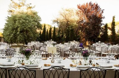 The 10 Best Catering Companies for Your Destination Wedding in Madrid
