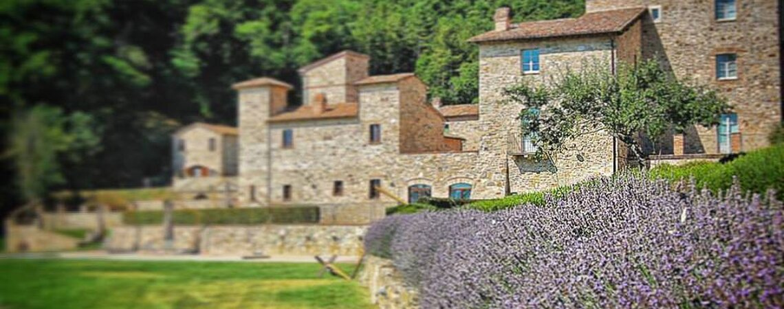 Immerso nella natura, SPAO Borgo San Pietro AquaeOrtus