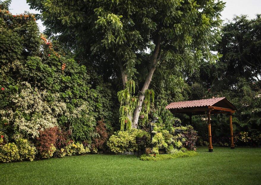 ¿Buscando un jardín para dar el sí? ¡Te contamos cómo es el lugar perfecto!
