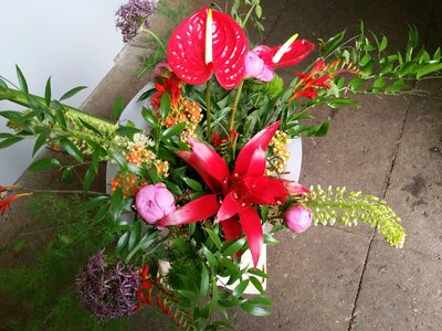 De 5 beste bloemisten van Amsterdam!
