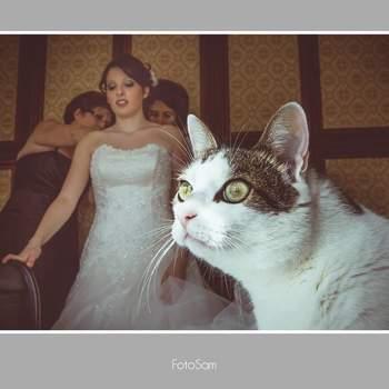 "<a href=""https://www.zankyou.it/f/fotosam-20585"">Clicca QUI per maggiori informazioni sul fotografo</a>"