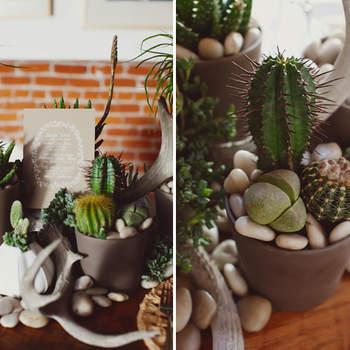 Une décoration verte et naturelle agrémentée de cactus et cailloux. Source : Green Wedding Shoes