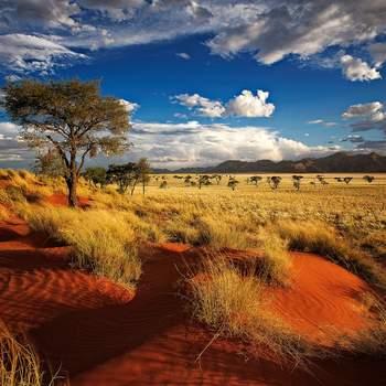 NAMIBIA. Foto: Shutterstock