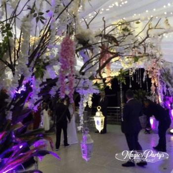 Foto: Magics Partys Eventos