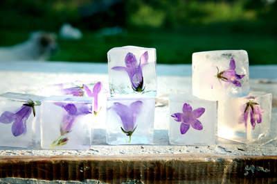 3 formas originales de llevar el hielo en las bebidas de tu boda