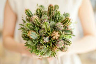 Decoração de casamento com suculentas e cactos: original e surpreendente!