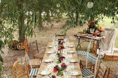 Label´Emotion on the Benefits of the Post-Wedding Lunch