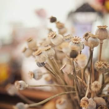Si buscas una decoración natural y llena de encanto, las flores son la alternativa perfecta. Son hermosas para adornar cualquier espacio y siempre lucen delicadas y muy divinas. Foto: 2Rings Trouwfotografie