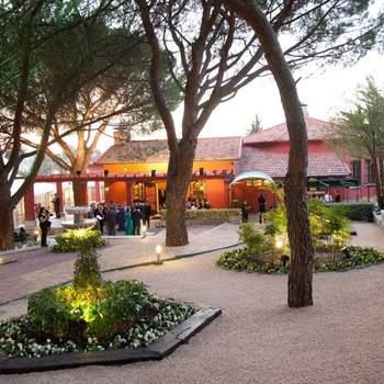 A escasos kilómetros de Madrid, se encuentran los Jardines de Fuentepizarro, con unas instalaciones en la que destaca un gran pabellón de cristal. Su gastronomía está liderada por el maestro Pepe Rodríguez, galardonado con Estrella Michelín y el Premio Nacional de Gastronomía.