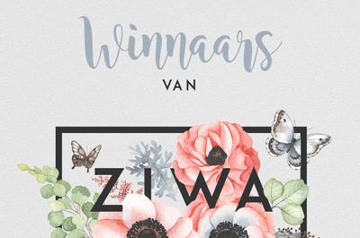 Dit zijn de winnaars van ZIWA 2017!