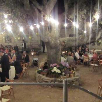 Para iluminar el baile, en oh!myWedding apostaron por la luz de las velas que colgaban en tarritos desde las ramas de las encinas. Foto: oh!myWedding. http://www.ohmywedding.es/