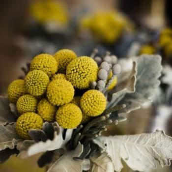 Le jaune, rien de tel pour un bouquet de mariée champêtre ! Une touche colorée et originale. - Source : Style Me Pretty