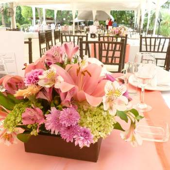 "<a href=""https://www.zankyou.com.co/f/flowerscol-435924/card/visit-web"" target=""_blank"">FlowersCol</a><a href=""http://ads.zankyou.com/k1k8"" target=""_blank"">FlowersCol</a>"