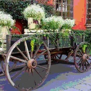 Foto: Arte y diseño floral