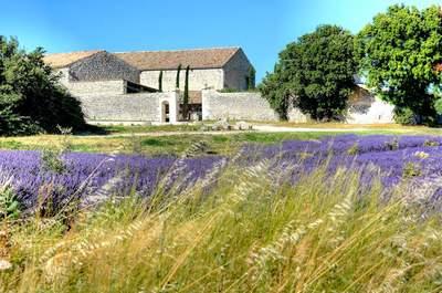 Un mariage à votre image dans la Drôme : les lieux de réception parfaits !