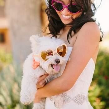 Conjunta a tu mascota preferida con unas gafas de sol. Foto: Danielle Capito