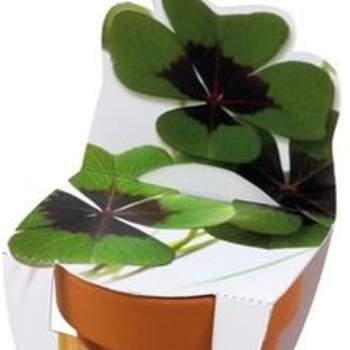 Un peu de verdure... - Pot de trefle - çachangedesdragées.com