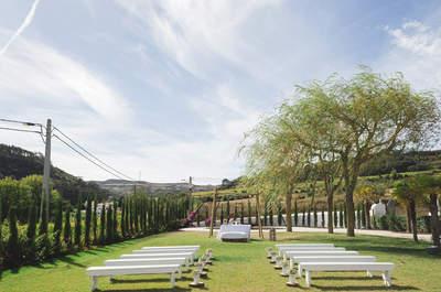 Páteo da Vinha: alma e dedicação é o segredo deste espaço encantador