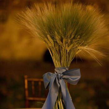 Le végétal est à l'honneur pour ce centre de table ultra élégant. Source : Style Me Pretty, La Dolce Vita Photography