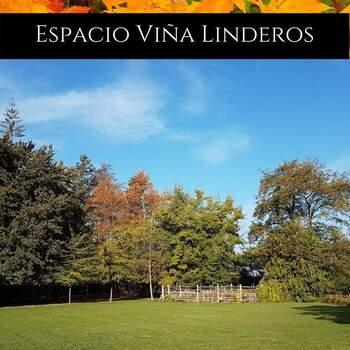 Foto: Espacio Viña Linderos