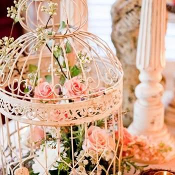 Credit: Dove wedding photography