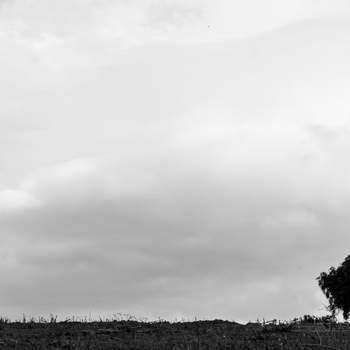 "Foto: <a href=""https://www.zankyou.es/f/fran-santander-495205"">Fran Santander</a>"