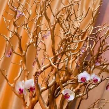 Centre de table, arbre doré - Crédit photo: Mariage Original