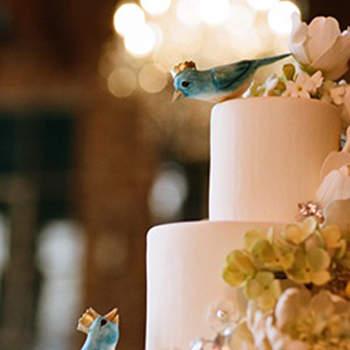 Foto: Fine Art Wedding Photography & Cinematography