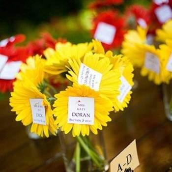 Foto: Better Homes & Gardens
