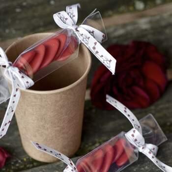 Ruban Vive Les Mariés 10mm - Achetez sur The Wedding Shop !