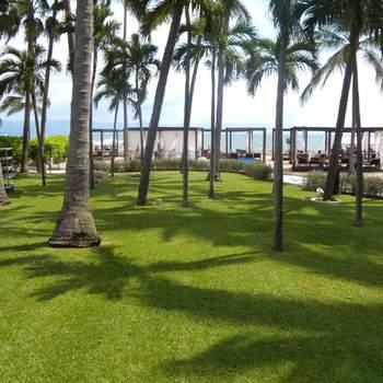 "<a href=""https://www.zankyou.com.mx/f/westin-hotel-resort-puerto-vallarta-10545""> Foto: The Westin Puerto Vallarta </a>"
