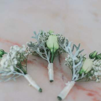 <a> Retractus Floral &amp; Paper Design </a>