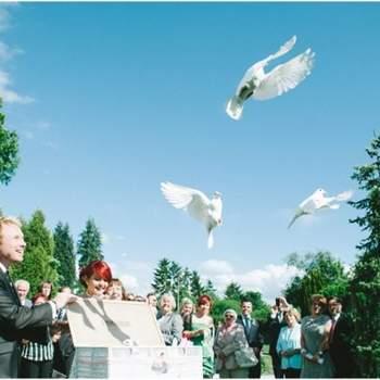 Foto: www.dp-hochzeitsfotograf.de