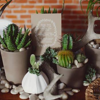Une décoration verte et naturelle. Source : Green Wedding Shoes