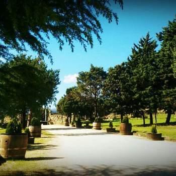 Foto: Finca Besaeda | Finca Besaeda es el espacio ideal para vuestra boda. Con amplios jardines y perfectos interiores reúne todas las condiciones para una boda mágica.